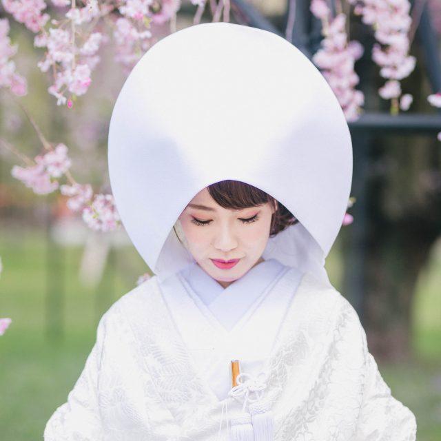 京都の上賀茂神社桜前撮り