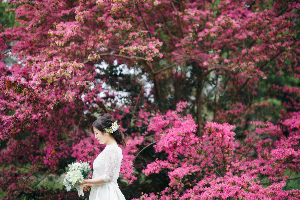 京都洋装前撮り