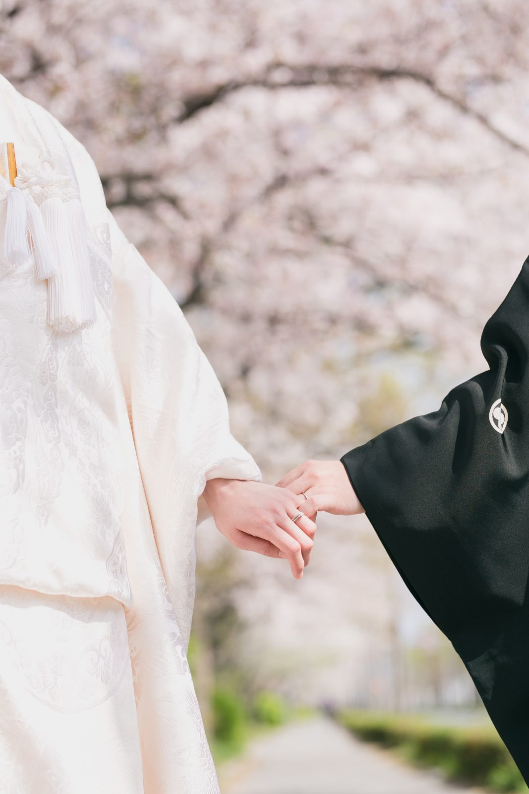 京都桜前撮りカメラマン